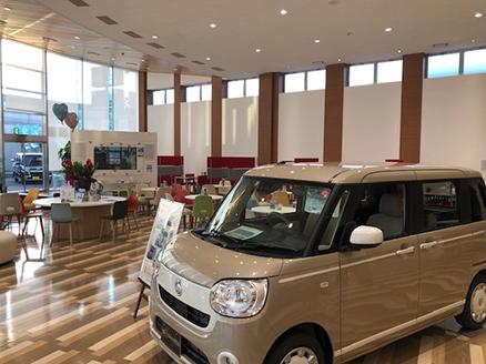 広々としたスペースで展示車をゆっくりご覧いただけます